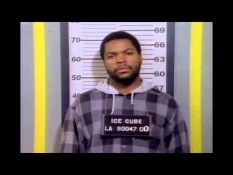 Ice Cube  Chech Yo Self