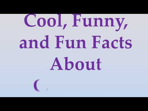 Cool, Funny, and Fun Facts About Cameroon