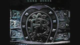 Nickelback Dark horse - Shakin