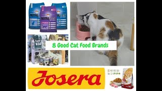 8 Good Cat Food Brands Available in Pakistan!