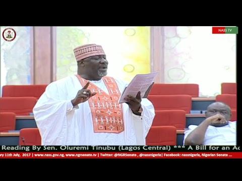 Nigerian Senate Plenary, 11th  July, 2017