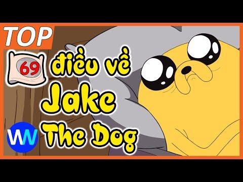 69 điều bạn cần biết về Jake the Dog