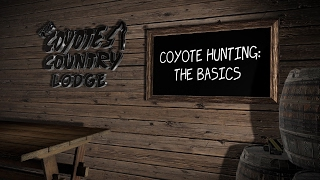 How to hunt coyotes, the basics.