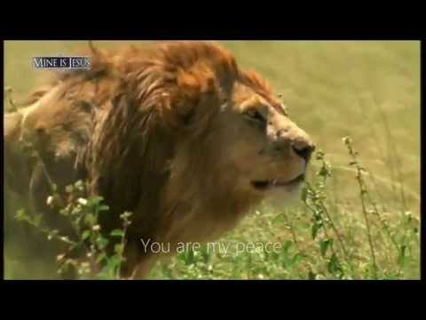 Jehovah Shalom - Shannon Wexelberg - Lyric Video