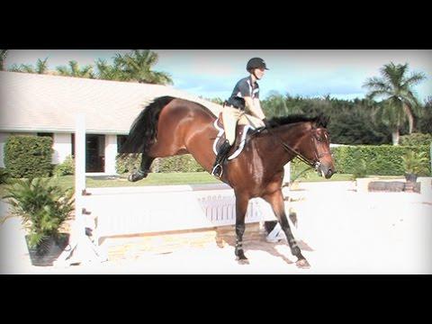 George Morris Schooling Series: An Equitation School With Emma Kurtz