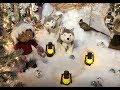 Kraynak's Christmas Land 2018