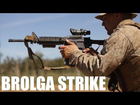 Brolga Strike