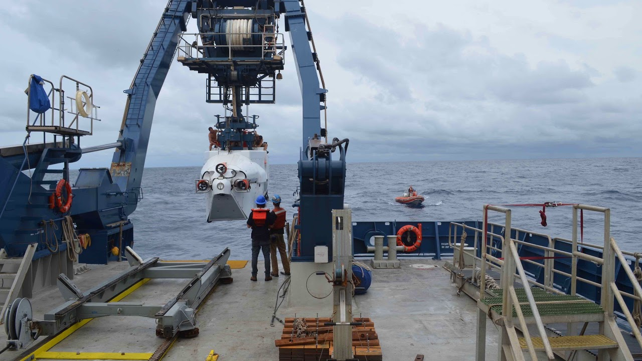 Deep-sea coral reef discovered off US coast