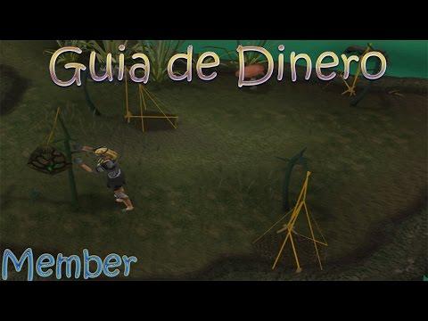 Runescape - Guía De Dinero - 770k+/Hr - Cazando Swamp Lizard