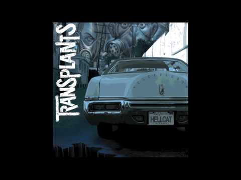 Tall Cans In The Air - Transplants