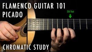Flamenco Guitar 101 - 07 - Picado: Basic Chromatic Study