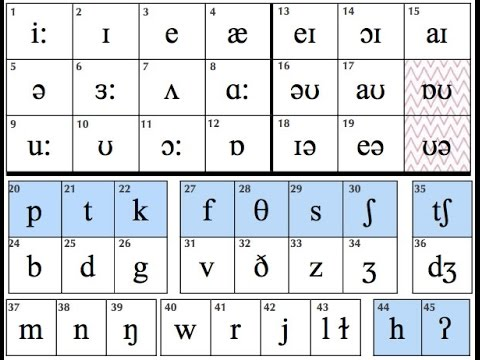 The vowels monophthongs of english