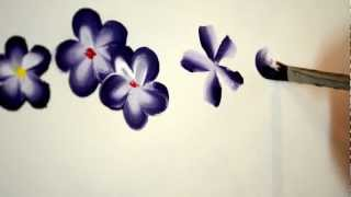 paint easy 5 petal flowers