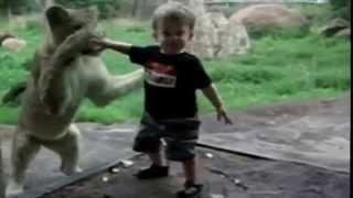 Смешное Видео Дети в зоопарке   Самые смешные моменты!