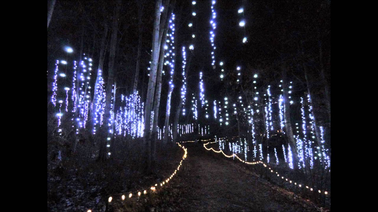 Elegant Green Bay Botanical Garden Of Lights   YouTube Design Ideas