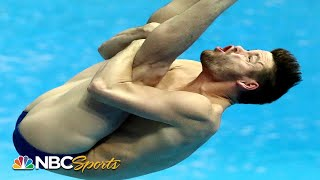 Olympic medalist David Boudia dives in springboard finals at World Championships | NBC Sports