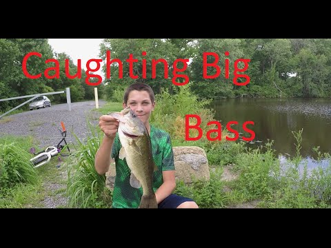 Bass Fishing With Plastic Lizards (And Family Bass Fishing Tournament)