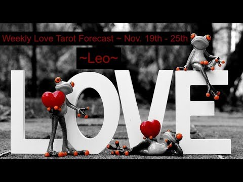 Leo *They are holding on tight!* ~ Lovescope Nov 19th-25th