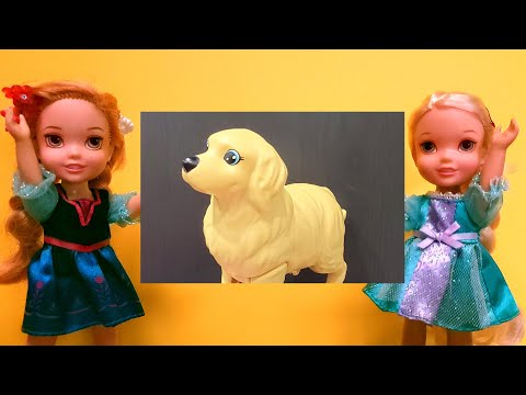 Lost dog ! Will Elsa & Anna toddlers find their pet?