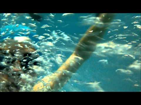 Extreme Waterproof Test SONY XPERIA M2 AQUA