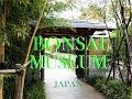 BONSAI Art Museum in SAITAMA, JAPAN    大宮盆栽美術館(埼玉)
