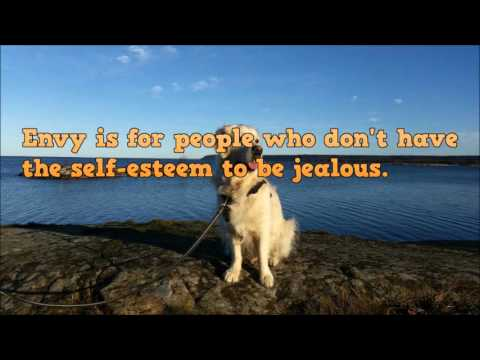 Quotes About Jealousy - Jealousy Quotes