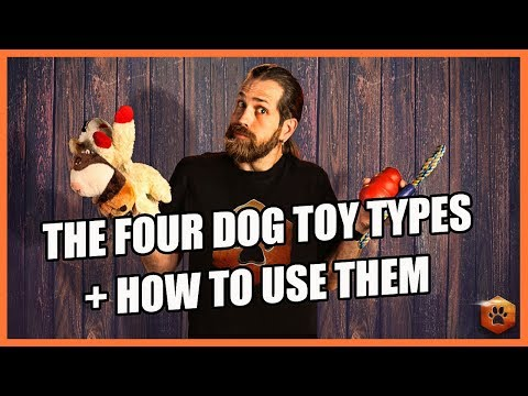 How to Use the 4 Types of Dog Toys RIGHT!