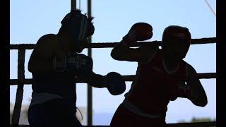 Día del Boxeo en la URSE