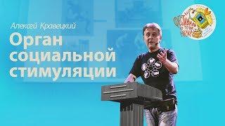 Алексей Кравецкий — Орган социальной стимуляции