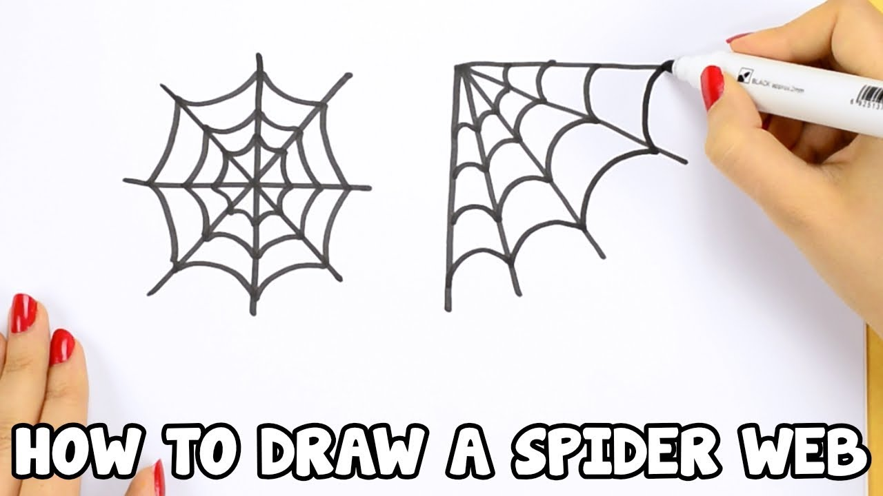 How to Draw a Spider Web - drawing tutorial for beginners ...