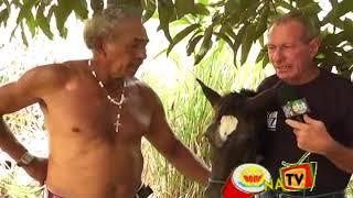 Repeat youtube video HOMENS DE 30 ANOS TEM RELAÇÕES COM EGUA DE 6 MESES NO BODE NA TV 05 03 2013