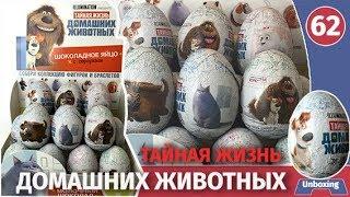 Шоколадные яйца тайная жизнь домашних животных. Распаковка сюрпризов