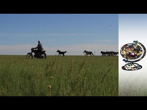 Mongolian Herders Under Threat From Heavy Industry