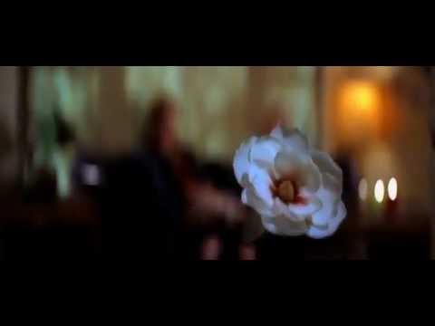 Aimee Mann - Save Me (subtitulos en español)