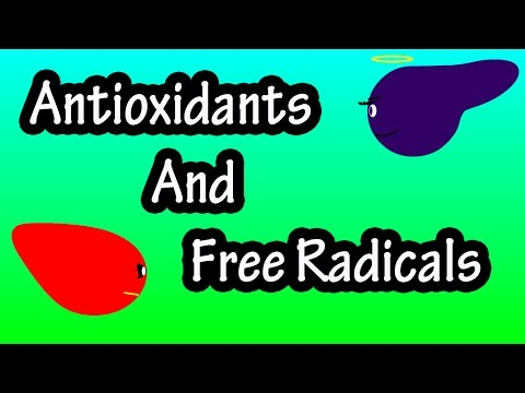 What Are Antioxidants Antioxidants And Free Radicals Explained What Are Free Radicals