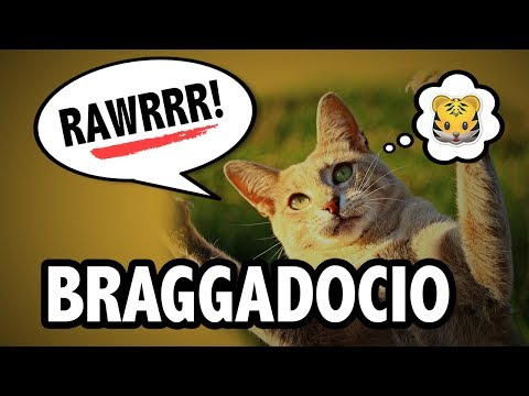 Learn English Words - BRAGGADOCIO - Meaning, Vocabulary with Pictures and Examples