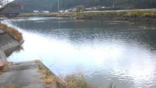 【釣り場】下ノ加江川 10月後半