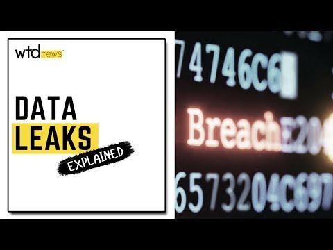 Data Leaks Explained