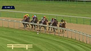 Vidéo de la course PMU PRIX DE LOUVIERES-EN-AUGE