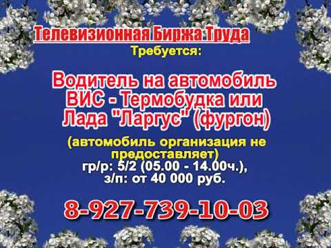 Телевизионная биржа труда. Эфир передачи от 01.04.2019