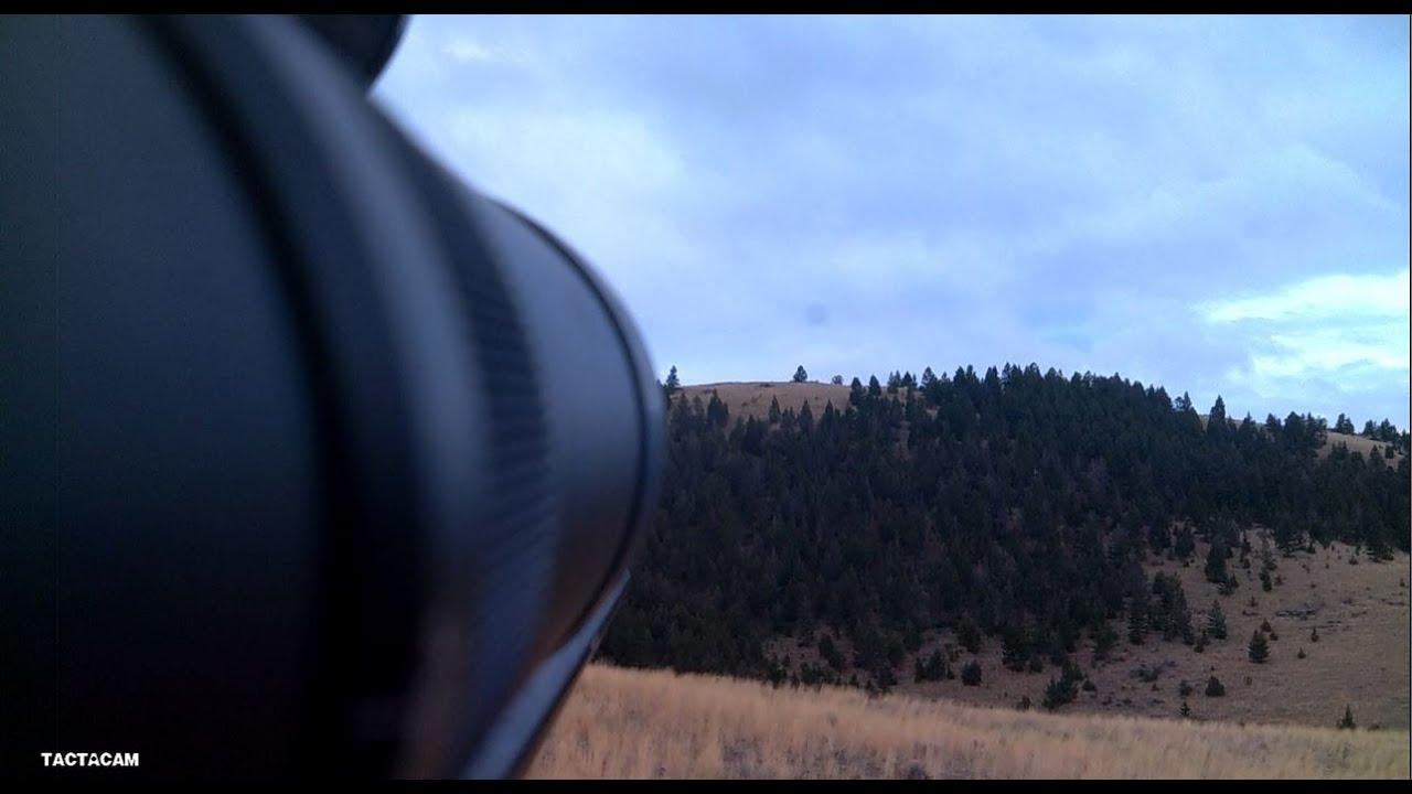 Dropping Elk at 550