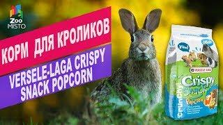 Корм для грызунов Versele-Laga Crispy Snack | Versele-Laga Crispy Snack review
