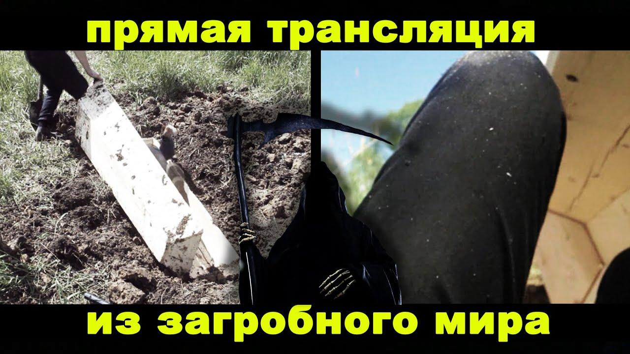 Найманці Ходаковського викопали укріпрайон на донецькому кладовищі - Цензор.НЕТ 6615