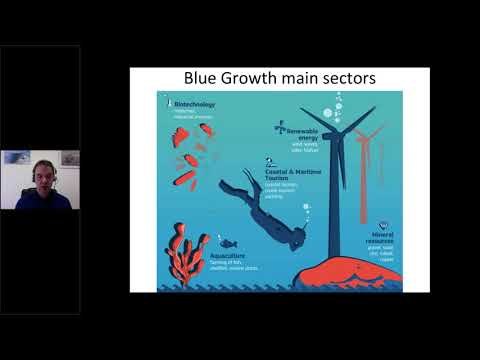 180329 - Blue Growth: science, society and innovation. A focus on the Mediterranean and Black Sea
