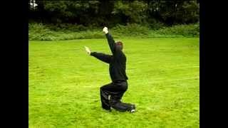 11 - Pak Yuen Chor Dung - Seven Star Mantis Kung Fu - M-Kung-Fu.de