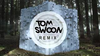 Download Drumsound & Bassline Smith ft. Hadouken! - Daylight (Tom Swoon Remix) MP3 song and Music Video