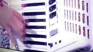 Bora Santana Razvaljuje Harmoniku
