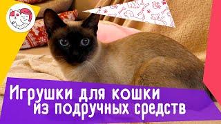 5 идей игрушек для кошки из подручных средств