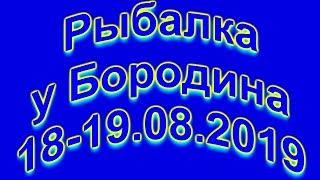 Риболовля у Бородіна 18 19 08 2019