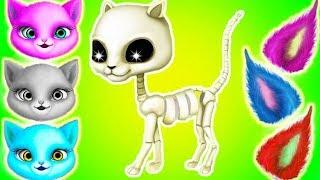 Fun Kitten Pet Care - Cat Hair Salon Birthday Party - Kitty Hair Salon Care & Makeover Kids Games